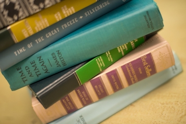 Vintage Hard Cover Books ~ great for color and to add height and interest